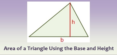 Area of a Triangle Using the Base and Height